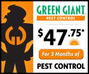 Pest Control Web Special